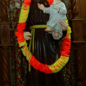 Garlanding the statue of St. Antony