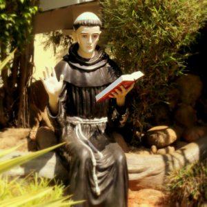 Fr.Jolly John